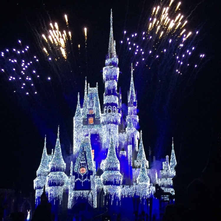 Mickey's Very Merry Christmas Party at Disney World