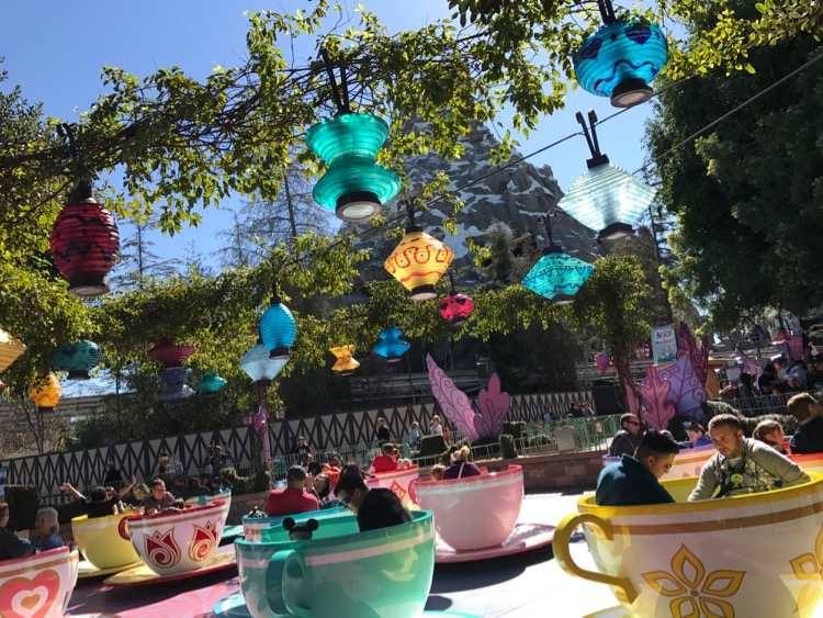Surprise Disneyland Vacation 2-Day Trip Report